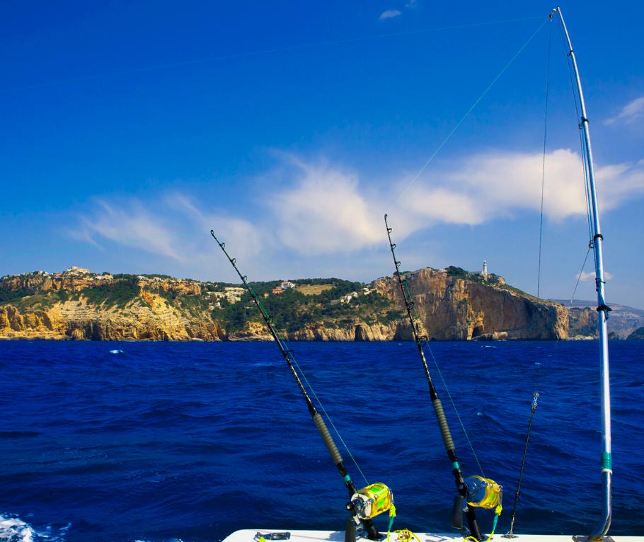 Cabo fishing tours